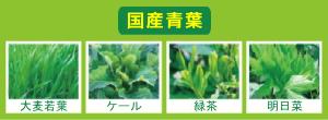 国産青葉(大麦若葉・ケール・緑茶・明日葉)